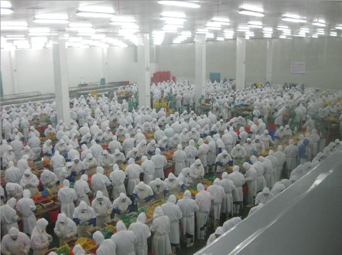 食品无尘室净化工程-德炎水产食品股份有限公司